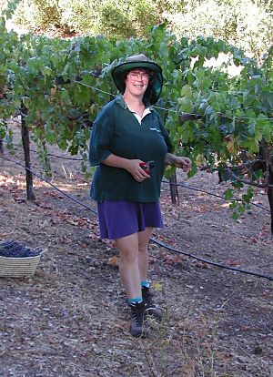 woman next to a row of grapes with garden shears
