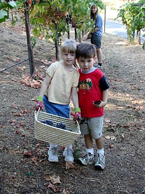 two children holding a basket of grapes in a vineyard