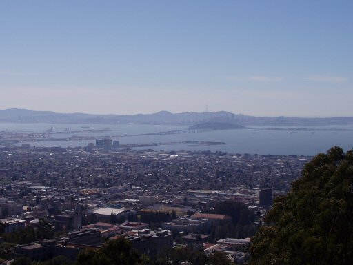 berkeley and san francisco bay view from a hill top
