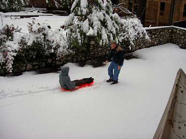 being pulled on a red sled in snow