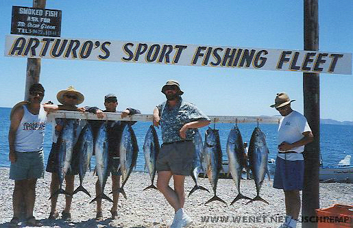 nine tuna with the fishermen. Arturo's, Loreto, Baja California, Mexico