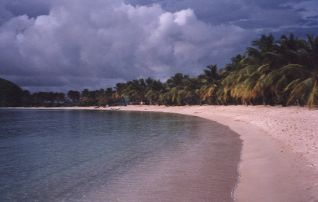 salt whistle bay picture of a pure tropical beach